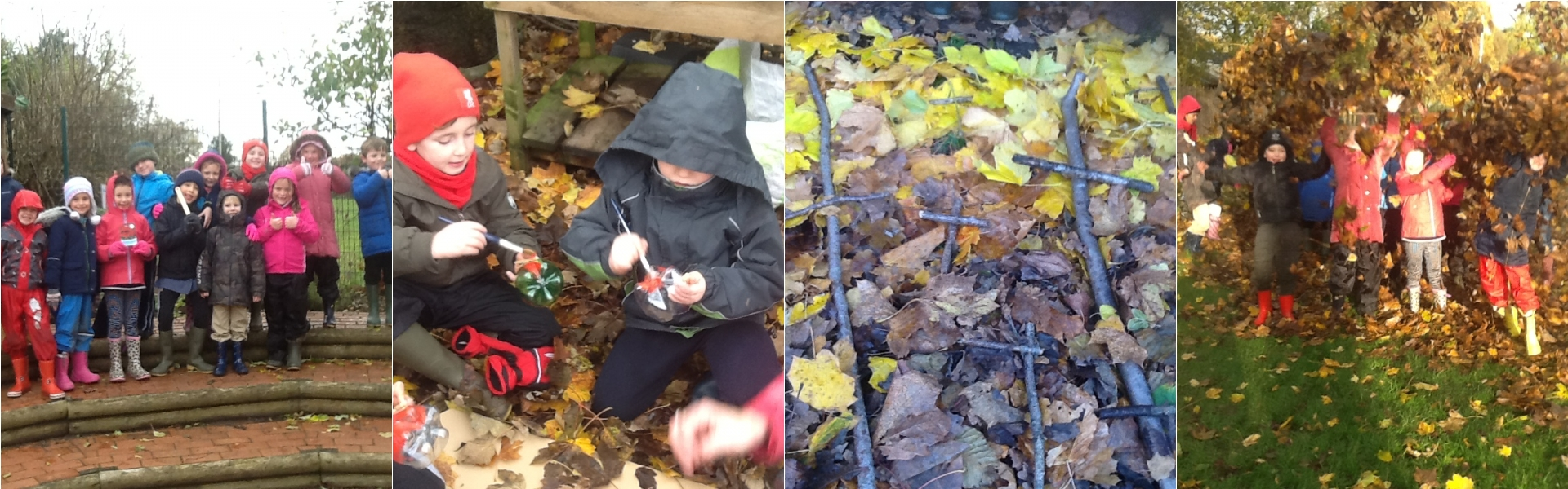 Forest School - Elm